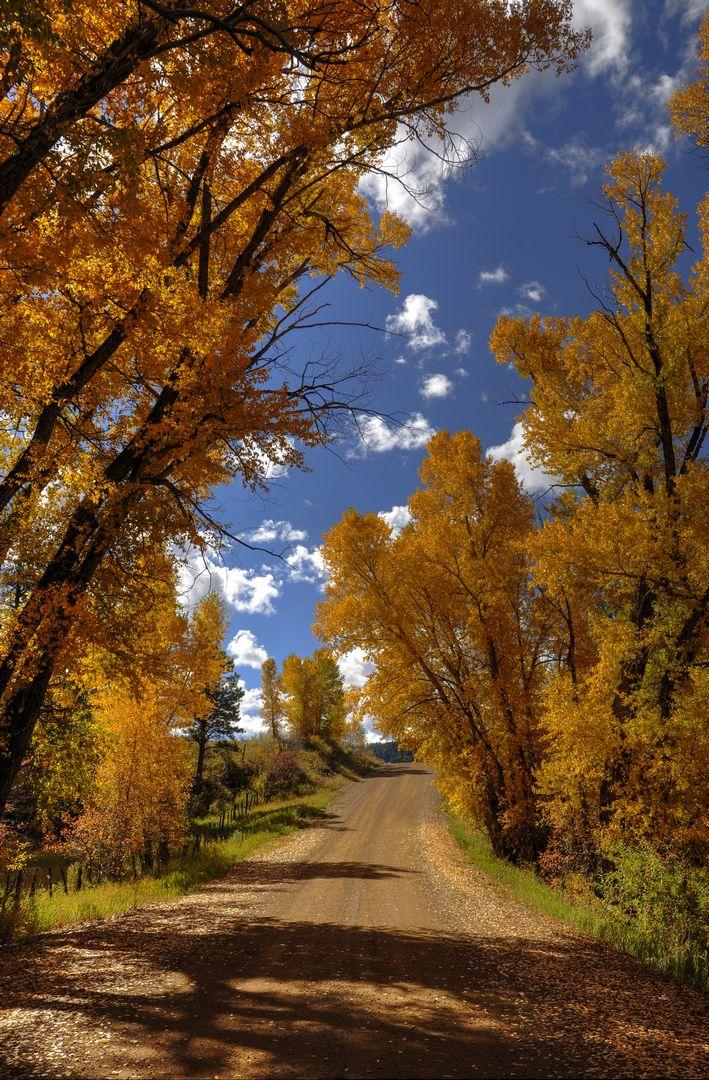 USA Autumn Colors