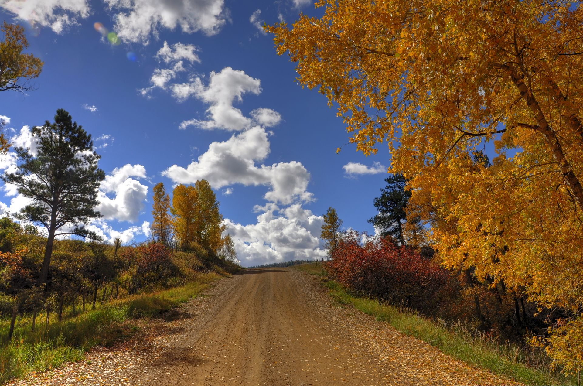 Autumn in New Mexico