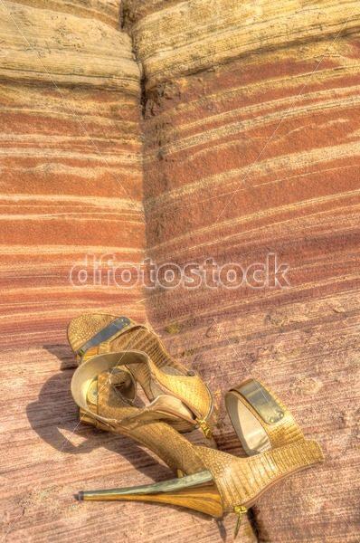 Spiked by Rainbow Rocks - dfoto.pl